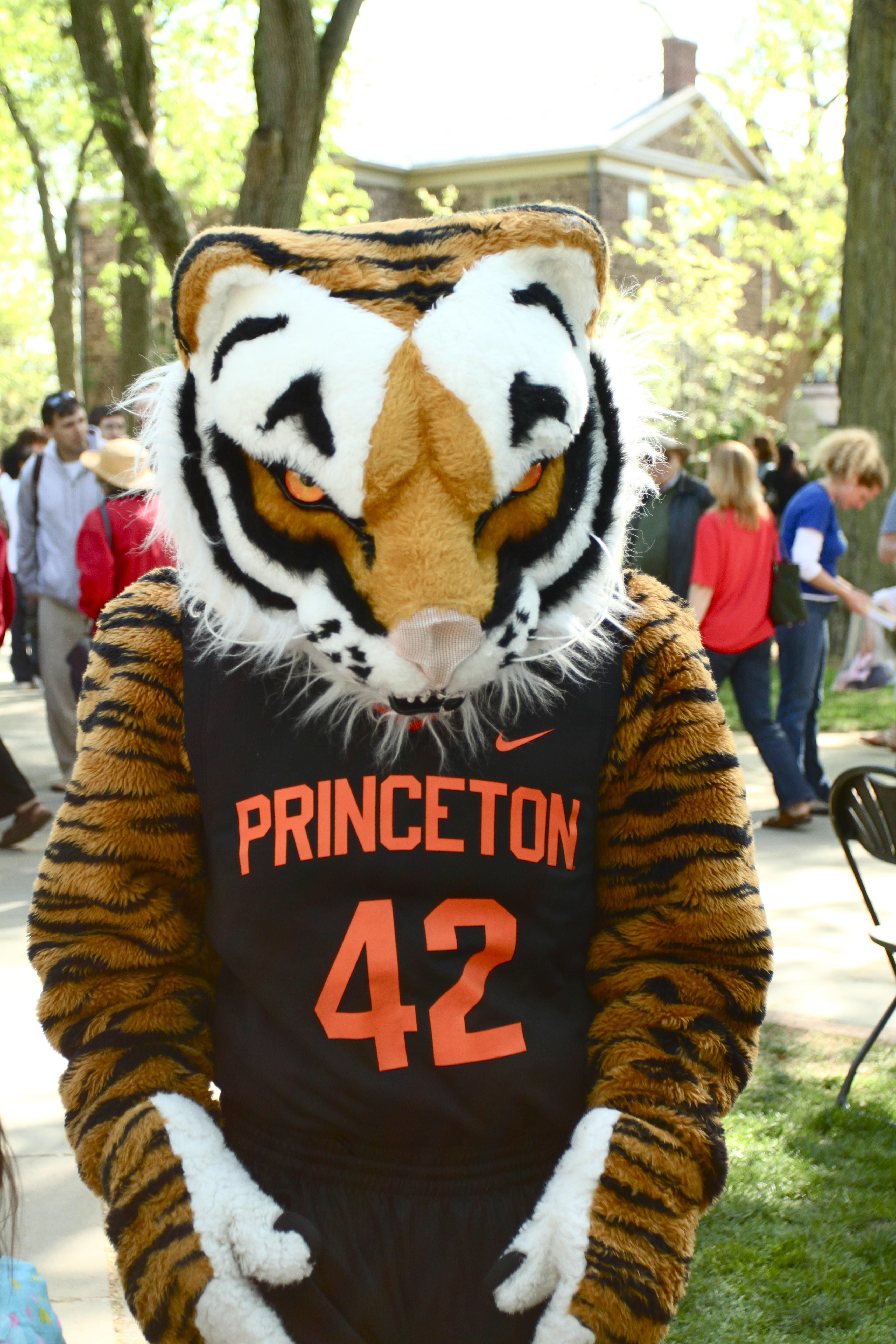Princeton Tigers mascot College Mascots Ivy League