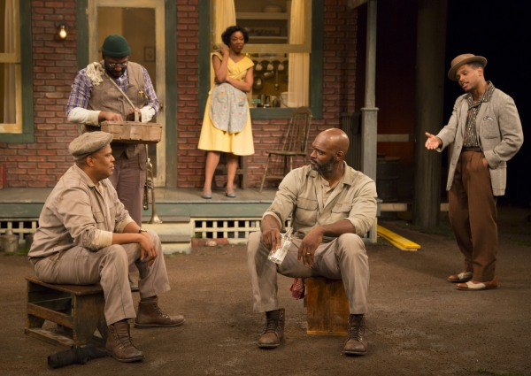 Fences at McCarter